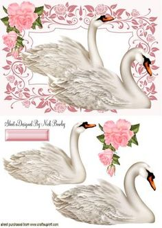 BEAUTIFUL WHITE SWANS IN FLORAL FRAME on Craftsuprint designed by Nick Bowley - BEAUTIFUL WHITE SWANS IN FLORAL FRAME, Makes a pretty card, lots of other swans to see - Now available for download!