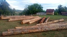 Chunks for the roof of the ecowoodstage #ecowoodstage