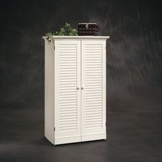 """Sauder Harbor View Craft Armoire for coffee bar, dining, study, or crafts in a cabinet. Hate the outside and short height, but like the """"insides"""""""