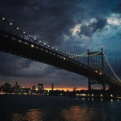 Noted: Goodnight NYC by Lisa Brewster