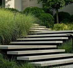 Garden stairs - Floating concrete steps by Page Duke Landscape Architecture Landscape Stairs, Landscape Plans, Landscape Architecture, Landscape Design, Architecture Design, Stairs Architecture, Modern Landscaping, Garden Landscaping, Shade Landscaping