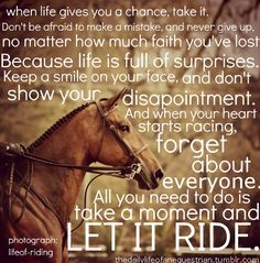 "thedailylifeofanequestrian: "" photo credit to lifeof-riding """