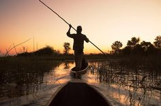 """Photo by @argonautphoto (Aaron Huey). Traveling by #Mokoro or dugout canoes around the #OkavangoDelta. We travel with the help of guides who """"pole"""" us through shallow water and weeds to see elephants birds and other wildlife (sometimes MUCH too close for comfort). We were rushing to get out of the channels before the Hippos came out for the night!  Check out more photos from my Botswana shoot all this week at @argonautphoto. by natgeo"""