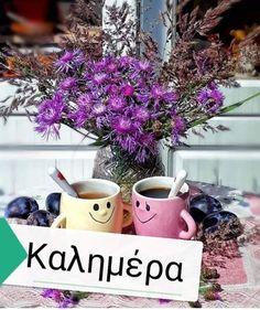 Mornings, Plants, Flora, Plant