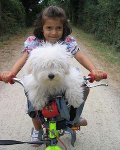 Please pedal a little faster or we'll never catch that cat!