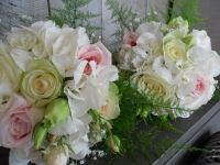 Very classic and popular combination of flowers and colors. Crisp white hydrangea and pale sorbet pink roses, with a bit of softening from the fern.