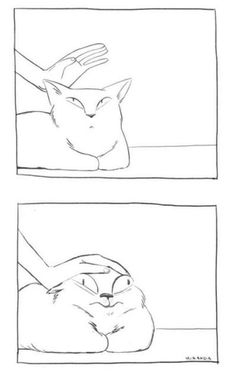 35 funny pictures for today - cute - # for - Katzen Ideen - Lustig Memes Humor, Cat Memes, Funny Memes, Funniest Memes, Humor Quotes, Funny Dogs, Funny Shit, Funny Cute, Hilarious