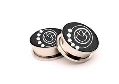 Hey, I found this really awesome Etsy listing at http://www.etsy.com/listing/164800758/blink-182-picture-plugs-007-picture-ear