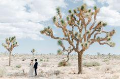 Intimate Joshua Tree Wedding Monica Rob