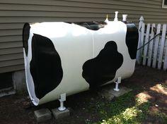 Cow oil tank!