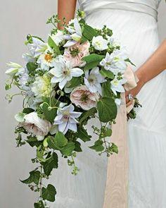 Clematis,garden rose, dahlia