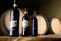 Interview mit Ca Bottura - Weingut und Olivenöl vom Gardasee