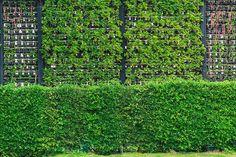Clôture de jardin pas chère, originale et design | Aménagement du ...