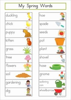 Spring Vocabulary Word Wall. Includes a personal word wall for students, a file-folder word wall for the writing or word work center and large cards for the classroom wall in color and black and white.