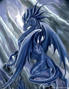 Just discovered my power animal was a water dragon!! still geeking out about it!