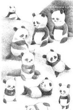 """Little Panda"", by Renata Liwska - #illustration #pandas"