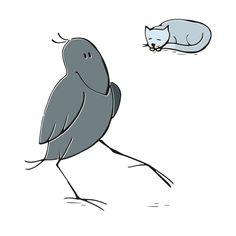 Was Krähen sehen