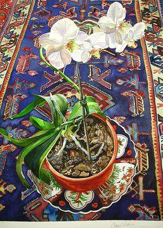 Botanical Watercolors by Carol Dawson