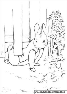 58 Best Beatrix Potter Colouring In Pictures Images Rabbits