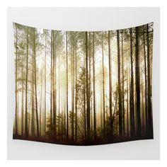 Glowing Forest Wall Tapestry ($39) ❤ liked on Polyvore featuring home, home decor, wall art, wall tapestries, interior wall decor, home wall decor, outside home decor and mounted wall art