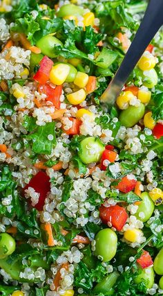 This Healthy Vegan Quinoa Salad recipe is packed with colorful vegetables and tossed in an easy peasy whisk-and-pour Mediterranean dressing for a delicious superfood salad that can't be beat! We make this salad a lot for a tasty side dish. Best Vegetarian Recipes, Meat Recipes, Healthy Dinner Recipes, Free Recipes, Homemade Dressing Recipe, Colorful Vegetables, Veggies, Superfood Salad, Quinoa Salad Recipes