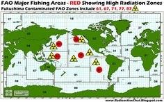 FAO Major Fishing Areas Showing Fukushima Contaminated FAO Zones 61,67,71,77,87 Radioactive Fish Food ☢