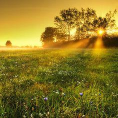 Sunrise by Zsolt Zsigmond