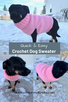 This cute, easy crochet dog sweater is very beginner friendly. Keep your pup warm this winter with an adorable crochet sweater. This cute, easy crochet dog sweater is very beginner friendly. Keep your pup warm this winter with an adorable crochet sweater. Crochet Dog Sweater Free Pattern, Dog Coat Pattern, Crochet Dog Patterns, Knit Dog Sweater, Sweater Patterns, Sweater Coats, Knitting Patterns Free Dog, Crochet Jumper, Coat Patterns