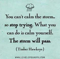 You can't calm the storm. so stop trying. What you can do is calm yourself. The storm will pass. -Timber Hawkeye God can calm the storm, stop trying to fix it yourself. Words Quotes, Wise Words, Me Quotes, Mentor Quotes, Calm Quotes, Peace Quotes, Happiness Quotes, Strong Quotes, Attitude Quotes