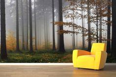 Autumn Mist Forest Wallpaper Mural