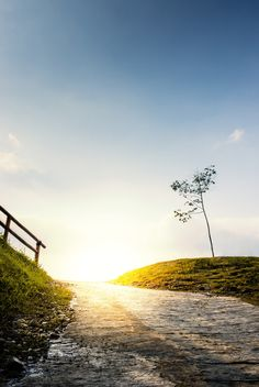 Morning Road by Indra Supriadi on All The Colors, Backgrounds, Country Roads, Wallpapers, Image, Wallpaper, Backdrops