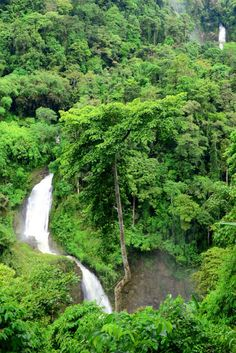 Lake Sebu's Seven Falls, South Cotabato The Seven Falls of lake sebu which is a series of majestic cascades lined-up one after the other. Seven Falls, Filipina Beauty, Archipelago, More Fun, Philippines, Scenery, Wanderlust, Tours, River