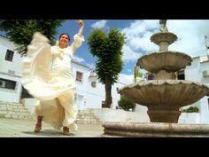 Flamenco courtesy of MJ Liggan on Youtube Marbella Property, Mj, Fountain, Outdoor Decor, Youtube, Flamingo, Water Fountains, Youtubers, Youtube Movies
