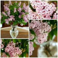 How to make cut flowers last longer - All you need to do is add 1/4 tsp of bleach to your vase and fill with water. The bleach will kill any bacteria in the water and help your flowers last longer.