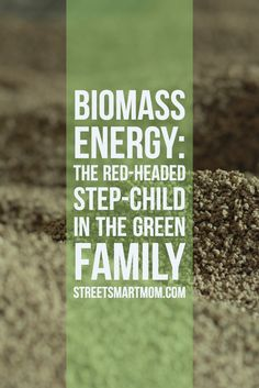 Hey Smart Moms!  I don't know about you, but I had never actually heard of biomass energy. Surprising to me, it is actually the one form of energy humankind is most familiar with in our long history of creating energy to get stuff done! From the very first person to create fire, we have …