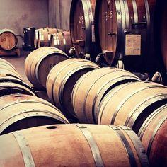 How are barrels made and how does wood influence the taste of wine? Find the answer on www.vininorden.com #barriques #aging #fad #wood #træ #oak #eg #tannins #vanilla #quality #kvalitet #rødvin #madogvin #hygge #winestyle #godvin #hvidvin #italy #denmark #vininorden #tw #pin
