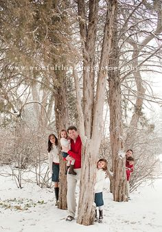 Beautiful Christmas card photo - peeking out from behind a tree is always interesting. It adds some whimsy and a bit of mystery.