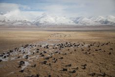 Views from a train to Tibet, by Yuriy Rzhemovskiy Mysterious Universe, China Image, Tibet, Free Pictures, Past, Mountains, Landscape, Travel, Outdoor