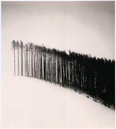 Forest Edge, Hokuto, Hokkaido, Japan - Michael Kenna (2004)