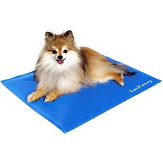 LotFancy Pet Dog Cool Pad Gel Mat for Dogs Cats Beds Crates Kennels, in Car or at Home, Self-Cooling (11.8 x 15.7 Inch) -- Details can be found at
