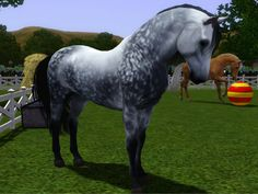 Fast and Pretty Horse Breeds | Forums - Community - The Sims 3