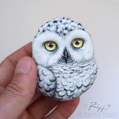 A Painted Snowy Owl in Its Wooden Nest, a Unique Handmade Artwork by Roberto Rizzo! What a Unique Gift Idea for All of You, Owls Lovers! Pebble Painting, Pebble Art, Stone Painting, Painted Rocks Owls, Owl Rocks, 3d Art, Rock Painting Designs, Snowy Owl, Rock Crafts