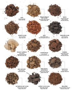 1000 images about wine 101 on pinterest wine facts for Soil and its types