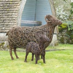 Swaledale sheep willow sculpture. Swaledale Ewe: £875Swaledale Lamb: £750 The sculptures are made using British willow that is interwoven and shaped around steel armature by talented artist Emma Stothard, who has been invited by HRH The Prince of Wales to exhibit her willow sculptures on the Orchard Lawns at Highgrove.