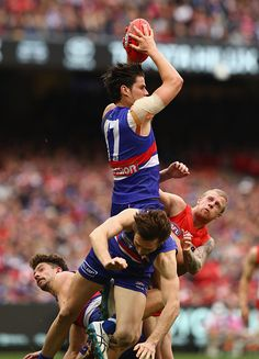 Tom Boyd of the Bulldogs marks during the 2016 Toyota AFL Grand Final match between the Sydney Swans and the Western Bulldogs at the Melbourne. Melbourne, Sydney, Western Bulldogs, Great Team, Pro Cycling, World Of Sports, Fantasy Football, Swans, Finals