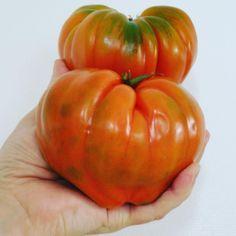 """Today missing the perfect spanish tomatoes. 🍅#freshveggies #tomatoes #homesick #tb #spoonfulness"""