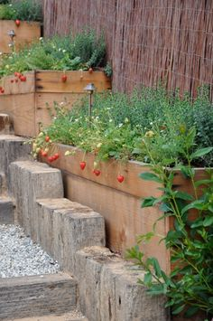 Veggie/Fruit/Flower boxes would look nice on the hill on the side of my house.