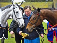 Arkle hero Simonsig gets a closer look at Bobs Worth's Gold Cup trophy.