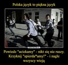 Polish Memes, Take A Smile, Stupid Quotes, Funny Mems, Eleven Stranger Things, Life Humor, Wtf Funny, Read News, Best Memes