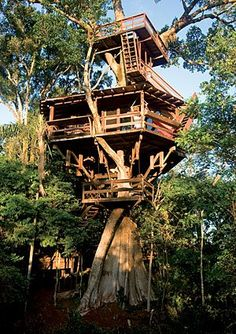 pete nelson s tree houses. Plain Pete Tree House Love On Pinterest Treehouse Nelson And Treehouses And Pete S Houses E